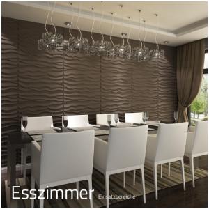 3D Wandpaneele - Einsatzbereich Privat - Esszimmer - Deckenpaneele - 3D Tapeten