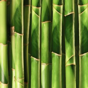 3D Wandpaneele - Bambus - Naturprodukt - Deckenpaneele - 3D Tapeten - Wandverkleidung
